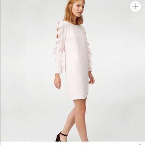 Club Monaco ruffled pink dress